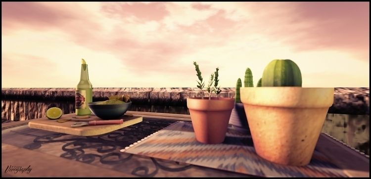 La Frontera ~ - secondlife, pots - vivography | ello