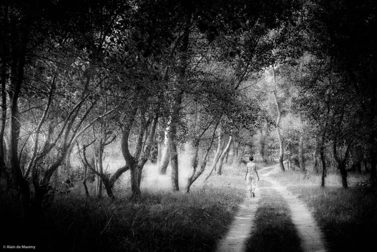Woman walking forest. Sun rays  - maximy | ello