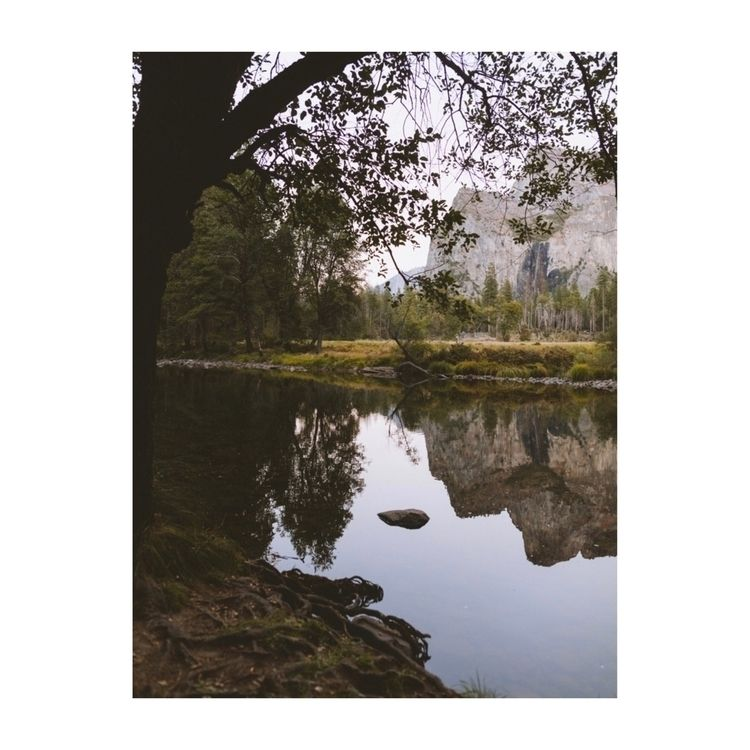 Reflection Yosemite - ivankosovan | ello