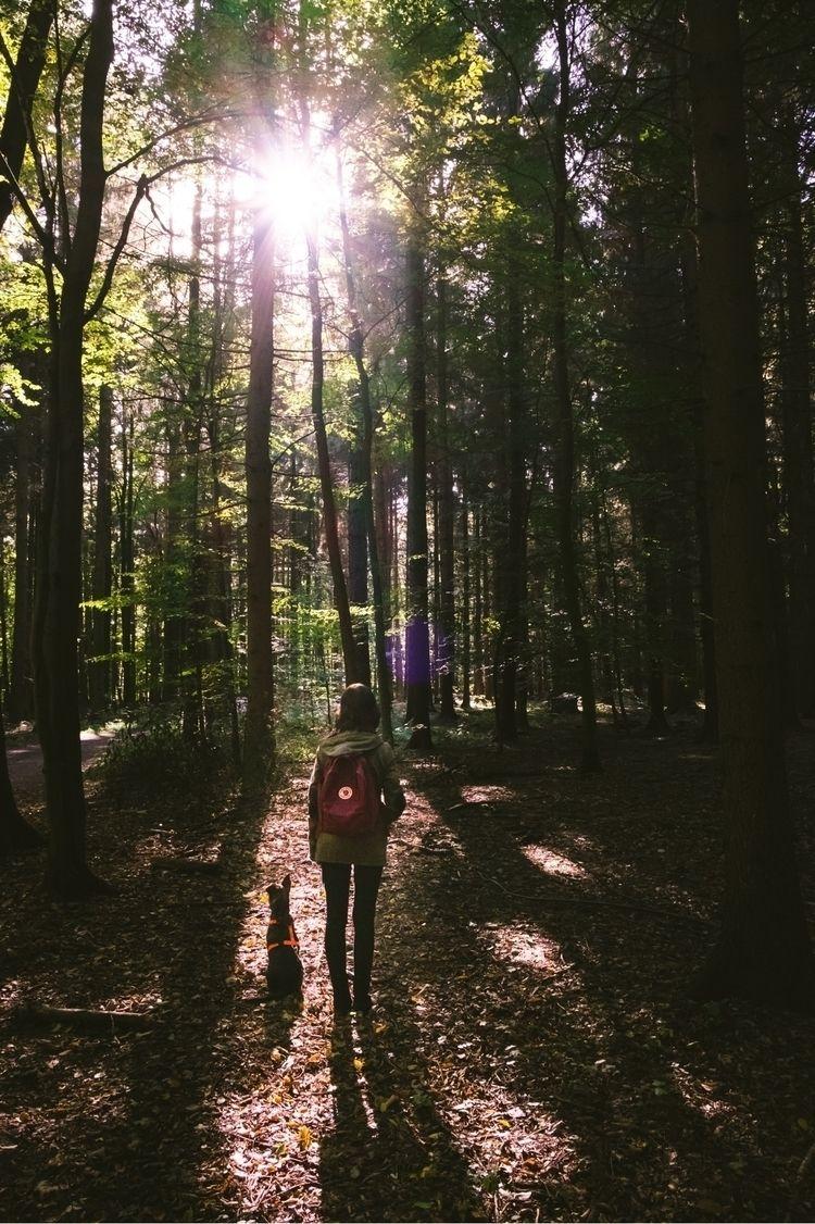 .. Visit portfolio - photography#nature - mobilshots | ello
