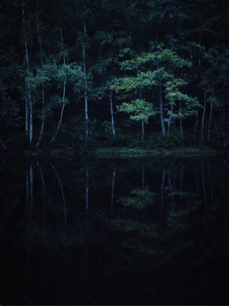 Night Life – Sebastien Schuller - oliviermorisse | ello