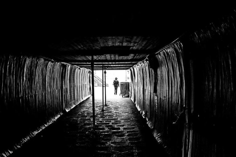 ellophotography#photography - venice - hansquasizenburger | ello
