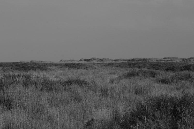 lost darkness set - blackandwhitephotography - henkjanpanneman | ello