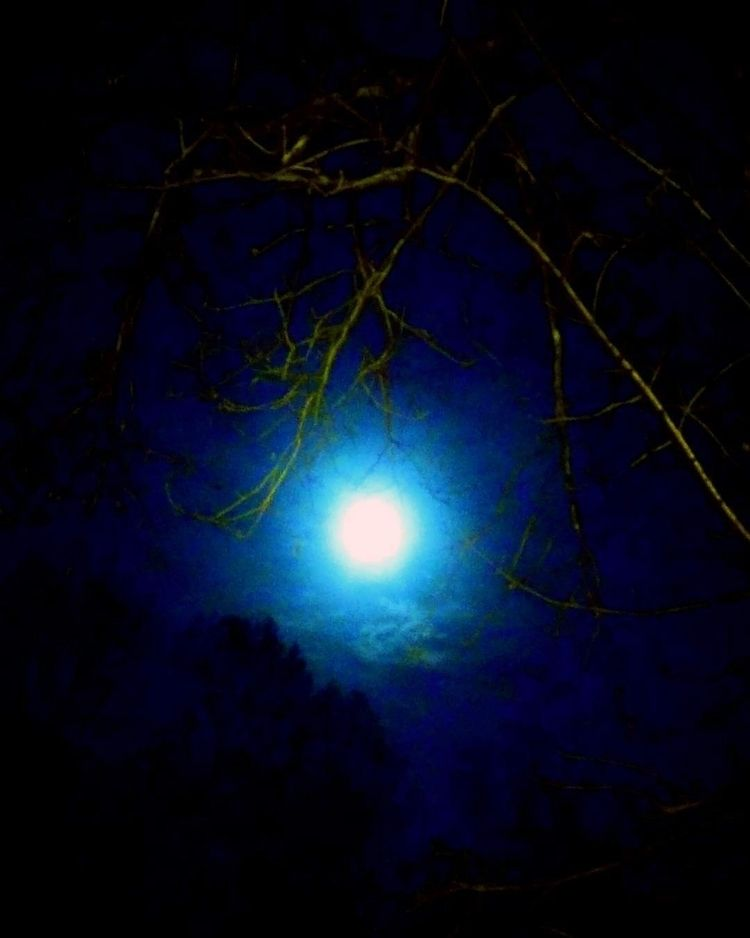 Super Moon - moon, fullmoon - ranjiroo | ello