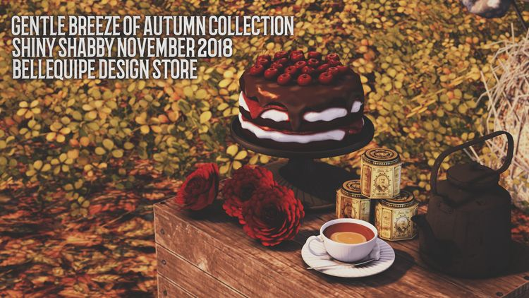 Gentle Breeze Autumn Collection - bellequipe | ello