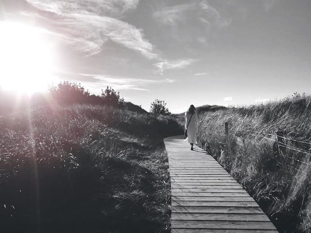Path Love - Iphone, iphoneography - itsrichardjohnson | ello