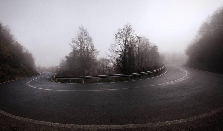 roads, fog, forest - gepetdo | ello