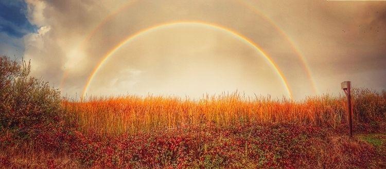 double rainbow - raindow, hollingsworth - hollingsworth | ello