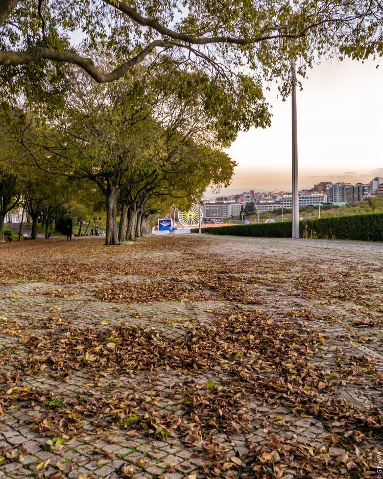 fall, ferriswheel, Lisbon, autumn - gilbyvm | ello