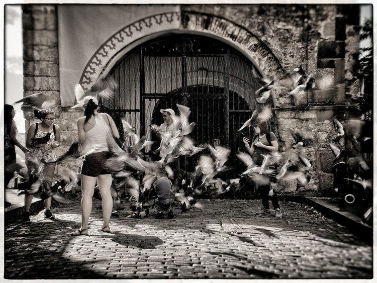 Chaos San Juan street image wan - neurodancer | ello