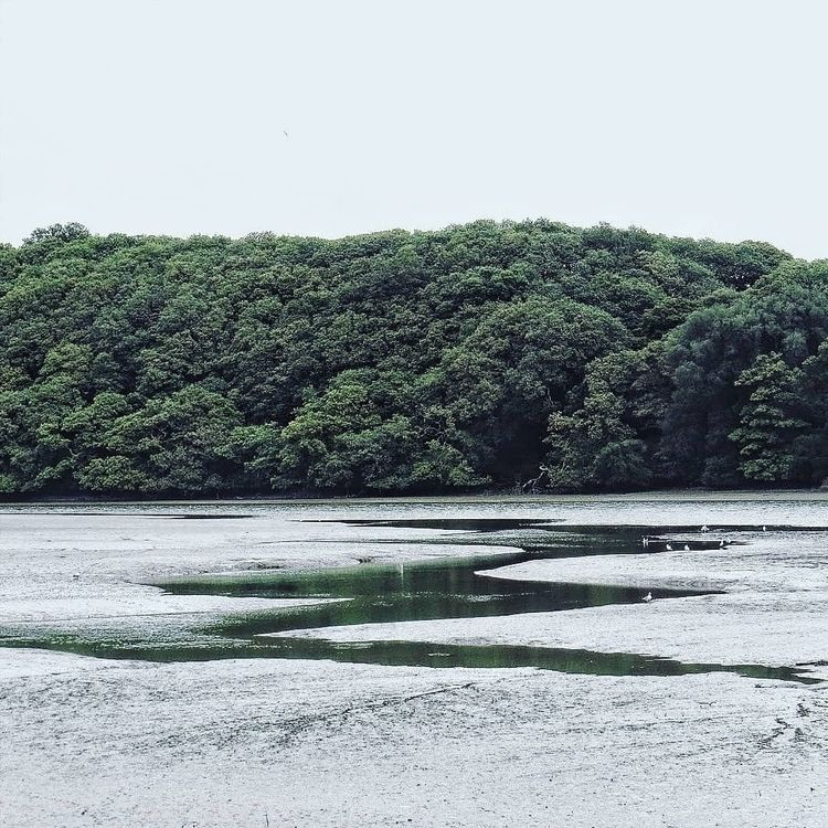 Mylor Creek, Cornwall - falmouth - lowenhazel | ello