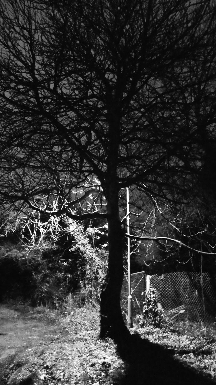 Light shadows (Panasonic Lumix  - paulbines | ello