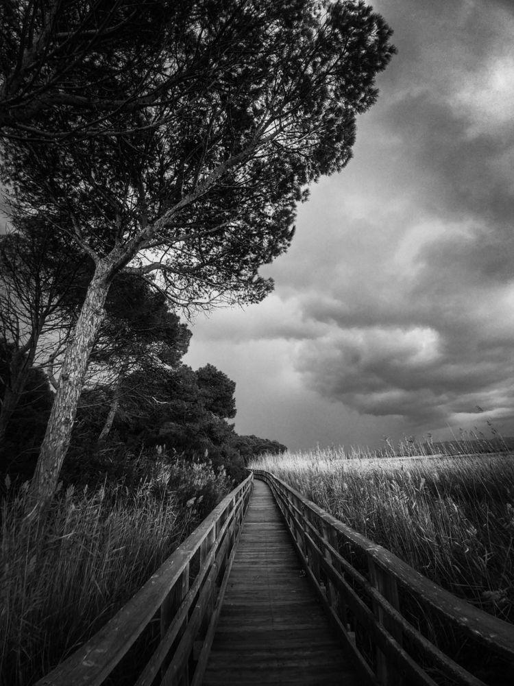 Walking lake - blackandwhitephotography - gavinobazzoni | ello