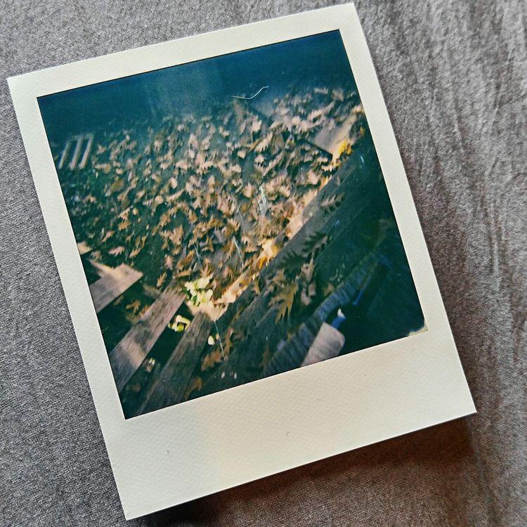 spring Prints Sale - evasivevie | ello