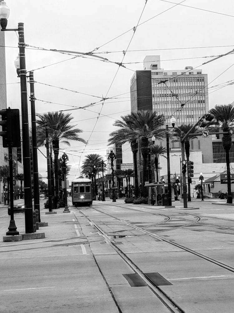 quick walk - NewOrleans, LA, photos - ftlm92 | ello
