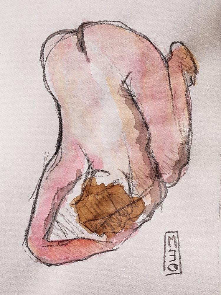 Nude, contemporarydrawing, pencil - meograf   ello