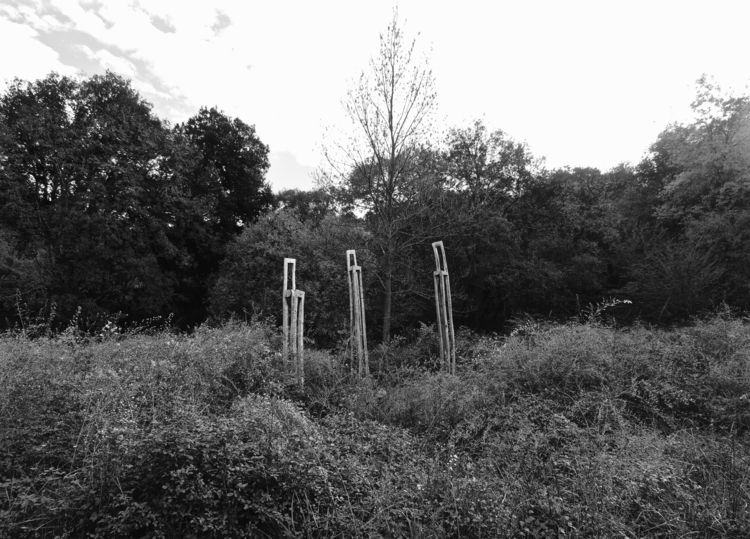 il bosco è casa di esseri magic - noemilzn | ello