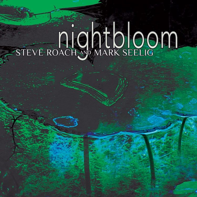 Journeying review Nightbloom CD - richardgurtler | ello