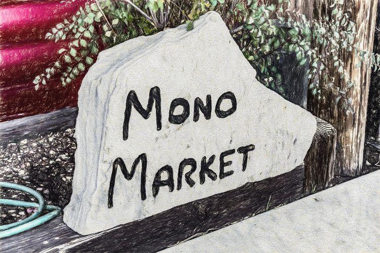 Mono Market Lee Vining, Califor - davidseibold | ello