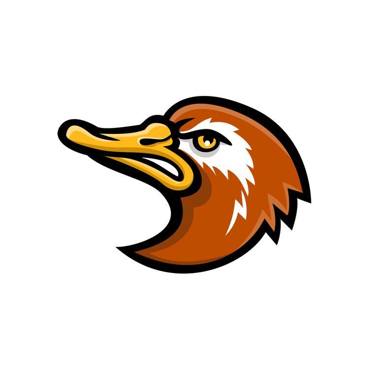 Laysan Duck Head Mascot - LaysanDuck - patrimonio   ello