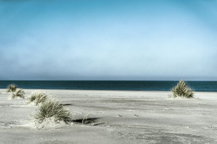 photography, beach, life, landscape - loyph | ello