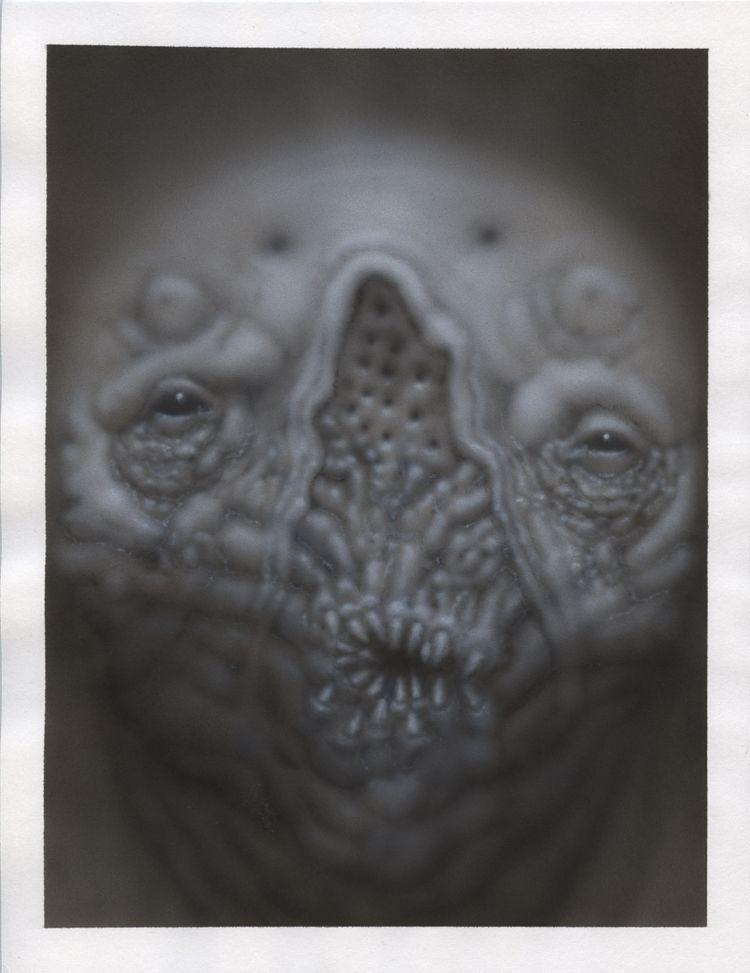 8.5 11 acrylic paper - nathanreidt | ello