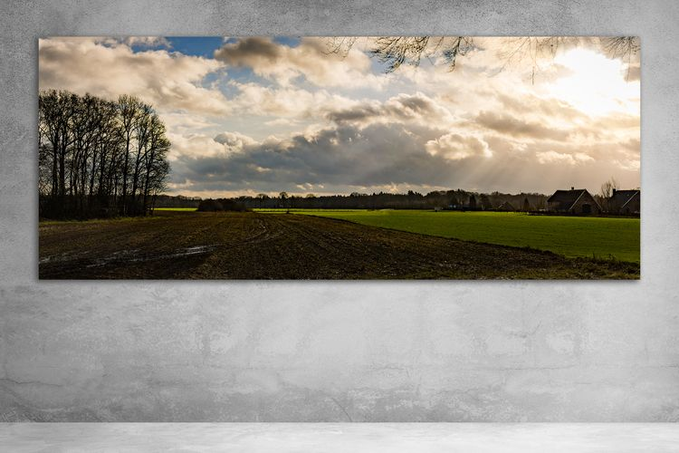 Dutch 🛒 --&gt - Rural, arc1, NaturePhotography - arc1 | ello