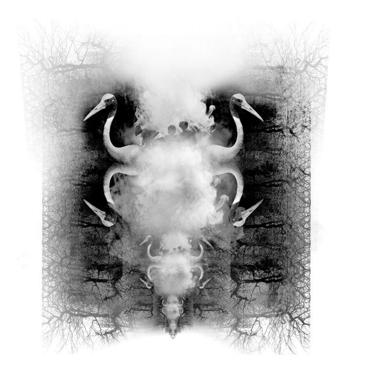 Riddle digital photography | ed - raynbowmagic | ello