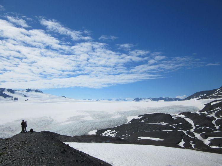 summer icefields - swirlyfox   ello