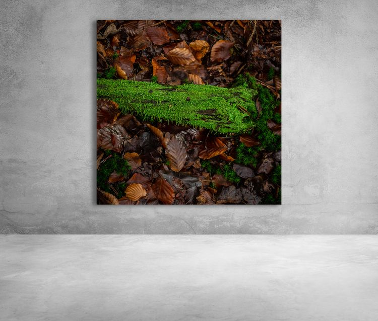 Bright Green Moss 🛒 --&gt - arc1 - arc1 | ello