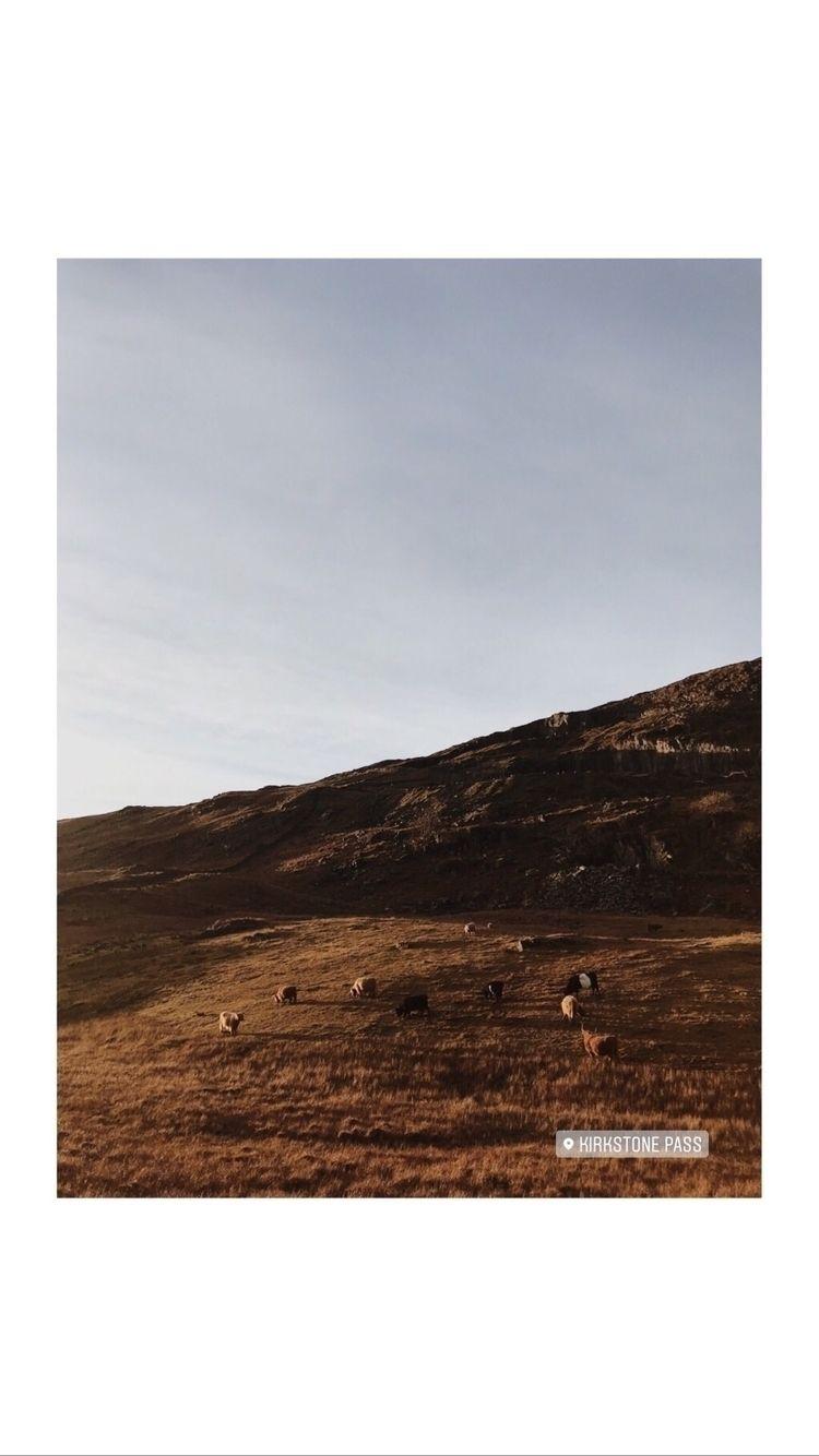 Lake District - beneaththepines | ello