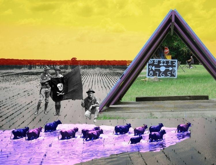Transient Collage 2018 collage  - peytonrack   ello