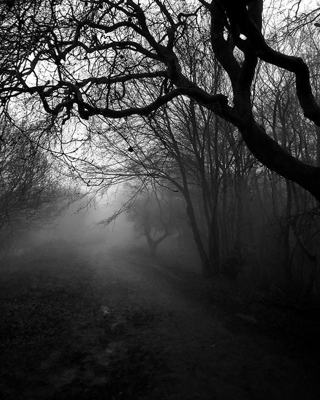 Dark Passage - Iphone, iphoneography - itsrichardjohnson | ello