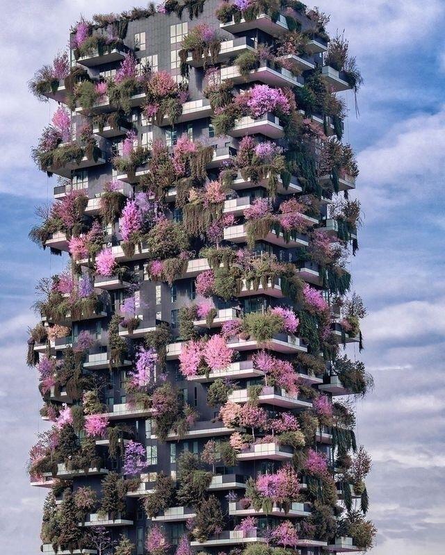 Happy 2019 - flowers, living, skyline - design1 | ello