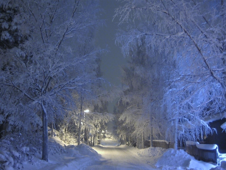 Twilight creeping snow takes bl - vivianmcinerny | ello