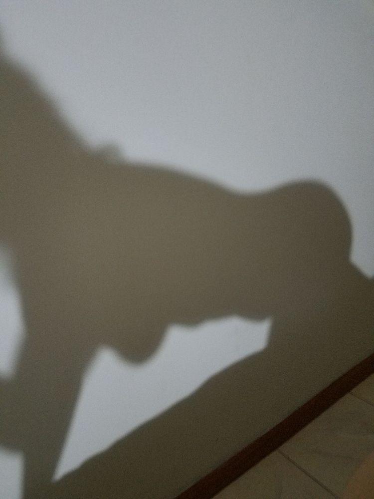 Shadow play. easy ya lol - shadowplay - eyeswill_linger | ello