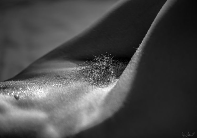 sensual, erotic, photography - andreasfriedl | ello