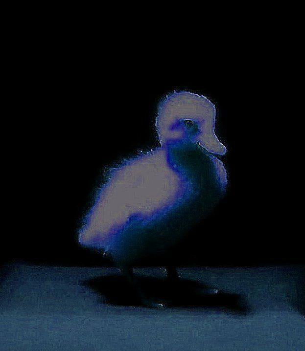 Light Moon Painter Loki - painterloki | ello