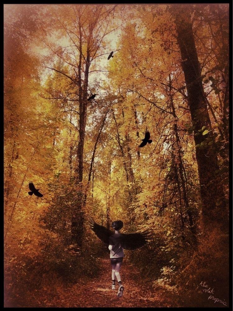"Art exhibit Flies Wings"" opens  - sophiawood | ello"