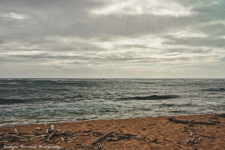Kauai, Hawaii Cendrine Marrouat - cendrinemedia | ello