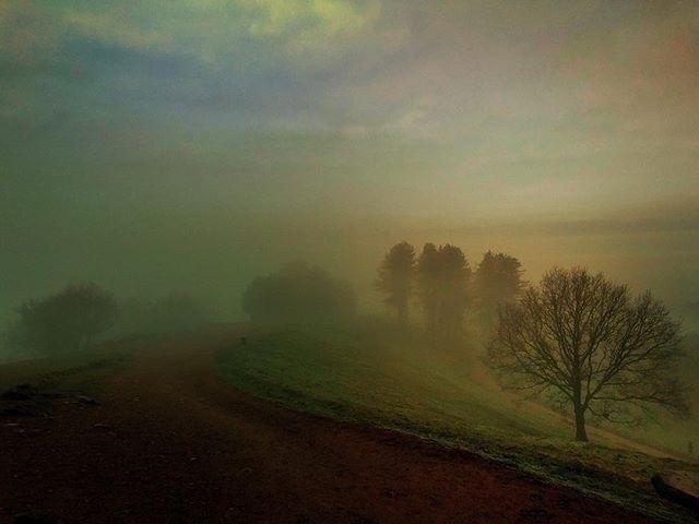 Morning Mist - Iphone, iphoneography - itsrichardjohnson | ello