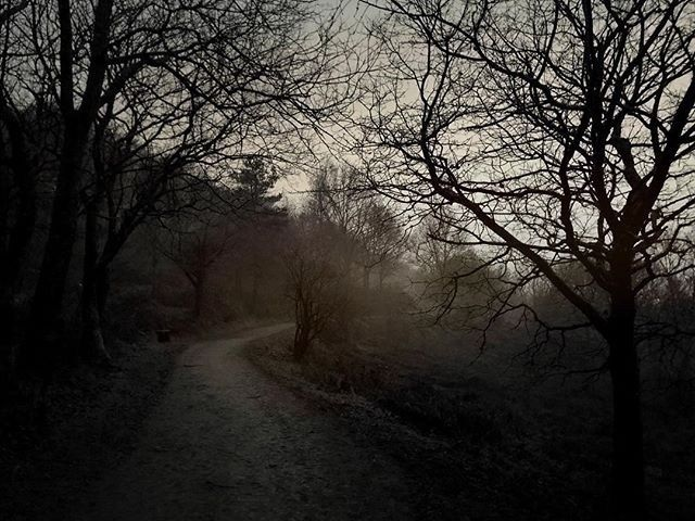 Strange Path - Iphone, iphoneography - itsrichardjohnson | ello