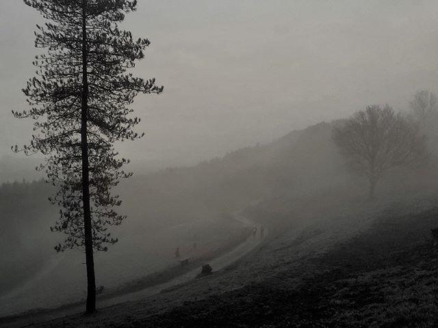 Lost Fog - Iphone, iphoneography - itsrichardjohnson   ello