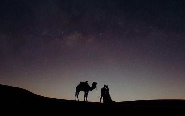 time Sahara - beneaththepines | ello