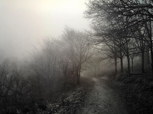 Confusion Fog - Iphone, iphoneography - itsrichardjohnson | ello