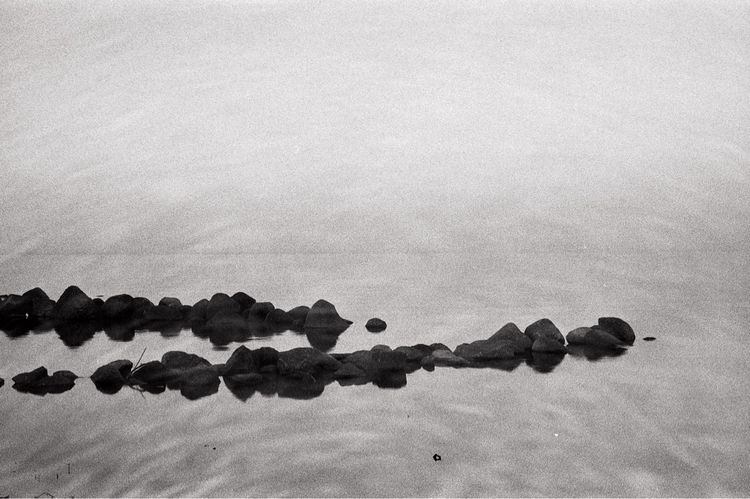 Lake Peipsi - doubleexposure, blackandwhite - raidokuurmaa | ello