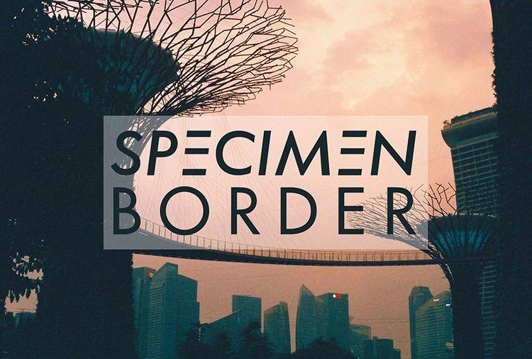 specimen latest cover photo Spe - serencoskun | ello