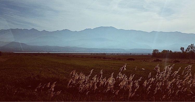Pastel de nada - photography, fujifilm - mirunapotop | ello