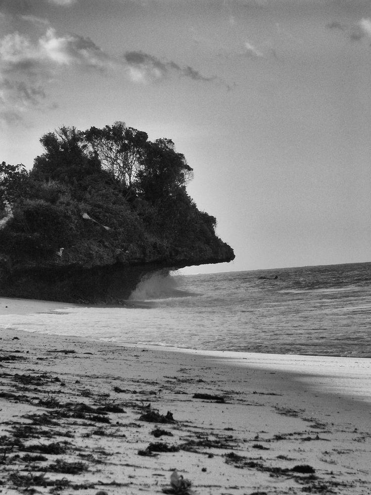 Beach east coast Zanzibar, tilt - fanikio | ello