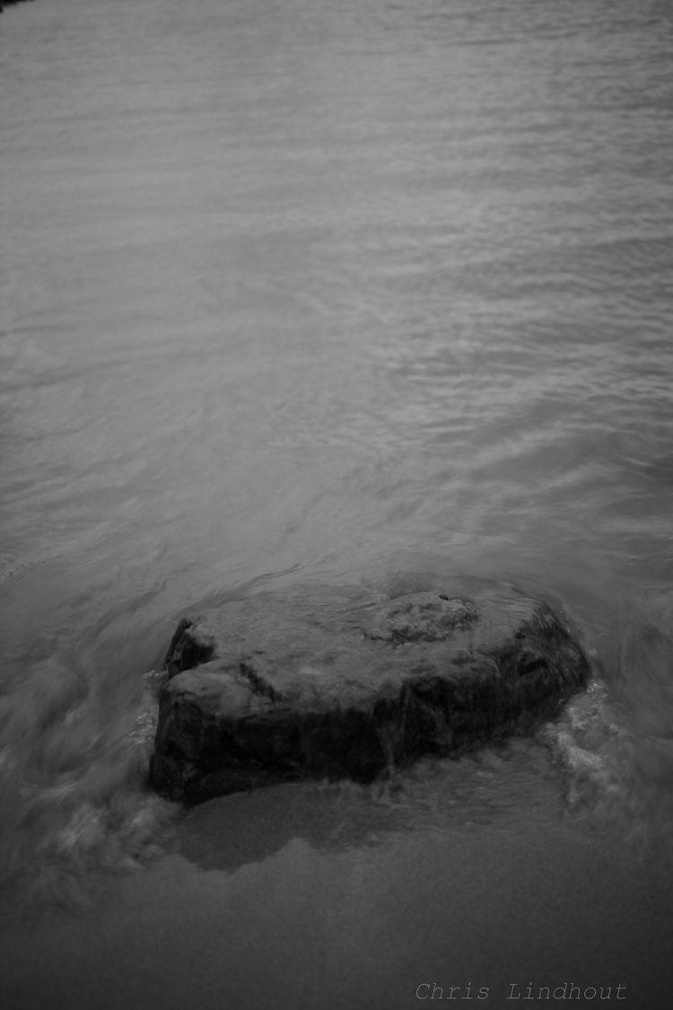 words stronger - landscape, trees - chrislindhout | ello
